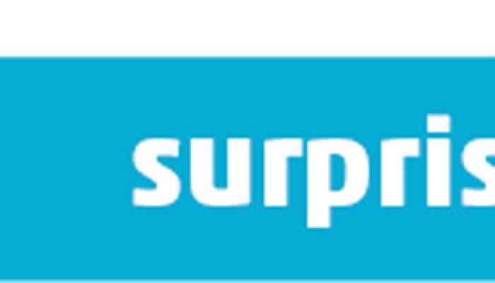 """Ausstellung """"surprise"""""""